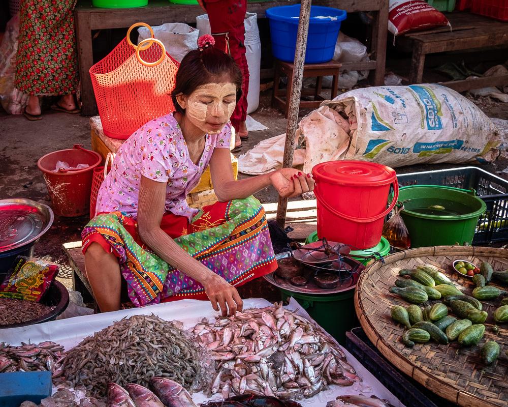 Bago - market - fish